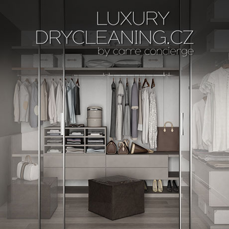 LUXURY DRY CLEANING